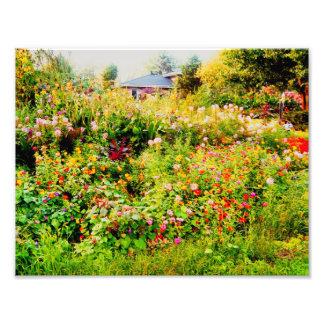 maison avec des fleurs photographes