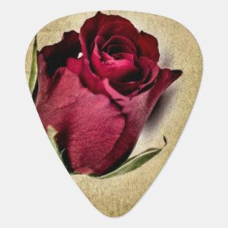 Majestätische Rote Rosen auf bräunlichem Plektron