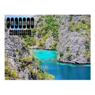 Majestätisches Palawan Postkarte