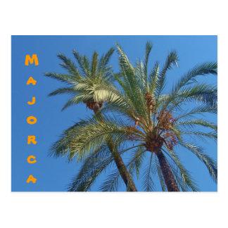 Majorca Palmen - Postkarte