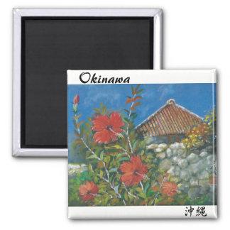 Malerei-Magnet-Hibiskus und Okinawan Haus Quadratischer Magnet