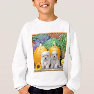 Maltesische Welpen des Erntedanks Sweatshirt