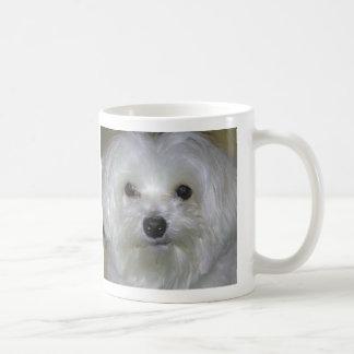 Maltesischer HundeTasse Kaffeetasse