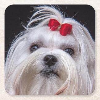 Maltesischer kleiner weißer Spielzeughund des Rechteckiger Pappuntersetzer
