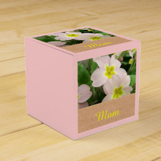 Mamma - Mutter-Tagesprimel-Blumen Geschenkschachtel