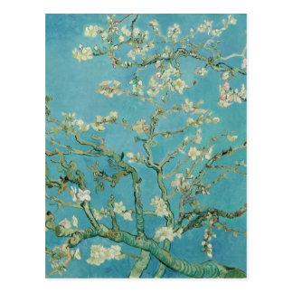 Mandel-Blüten durch Vincent van Gogh Postkarte