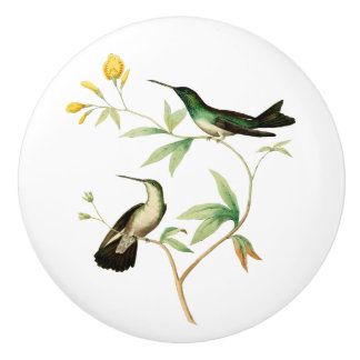 Mangroven-Kolibri Keramikknauf