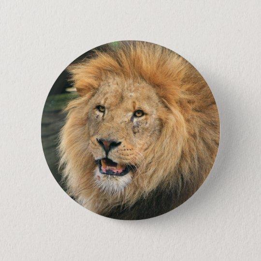 Männlicher schöner Fotohauptknopf des Löwes, Runder Button 5,1 Cm