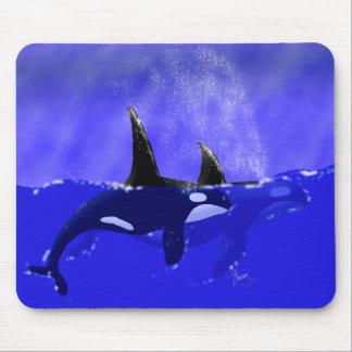 Männlicher und weiblicher Schwertwal im Ozean Mousepads