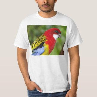 Männliches OstRosella T-Shirt