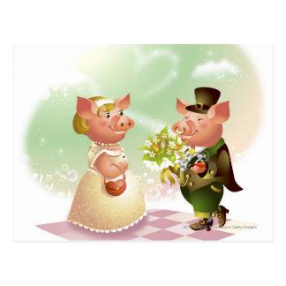 Männliches Schwein gibt einem weiblichen Schwein Postkarte
