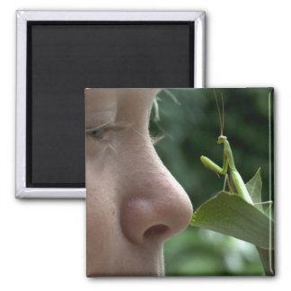 Mantis religiosa quadratischer magnet