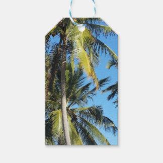 Maragogi Palmen Geschenkanhänger