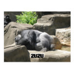 march7 927, ZuZu, ZuZu Postkarte
