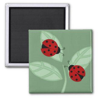 Marienkäfer auf Blätter-Magneten Quadratischer Magnet