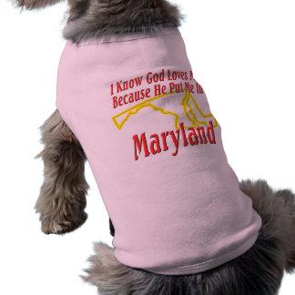 Maryland - Gott-Lieben ich Top