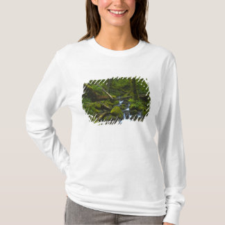Mäßiger Regenwald-Strom in Columbia River T-Shirt