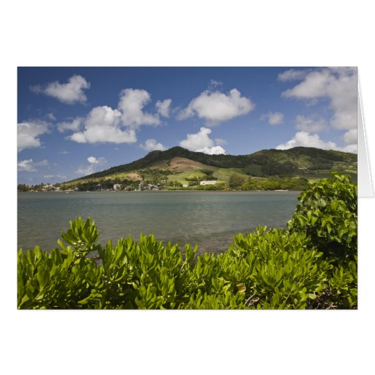 Mauritius, Südmauritius, großartiger Zobel, Grußkarte