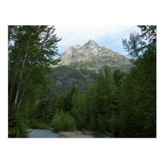 McDonald-Nebenfluss am Glacier Nationalpark Postkarte