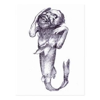 Meerjungfrau P.T. Barnums Fidschi Postkarte
