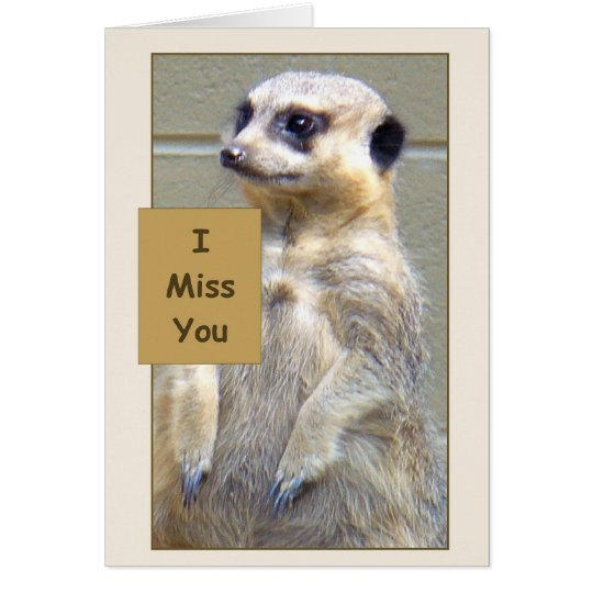 Meerkat du fehlst mir Gruß-Karte Karte