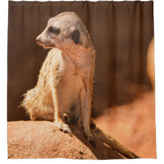 Meerkat Duschvorhang