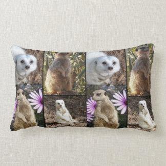 Meerkat Foto-Collage, lumbales Kissen