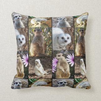 Meerkat Foto-Collage, Throw-Kissen Zierkissen