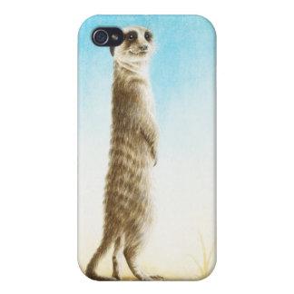 Meerkat iPhone 4/4S Hüllen