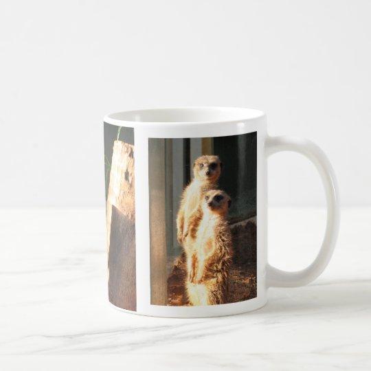 Meerkat Morgen Kaffeetasse
