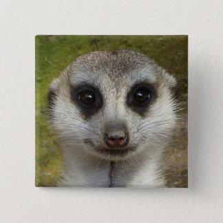 Meerkat Quadratischer Button 5,1 Cm