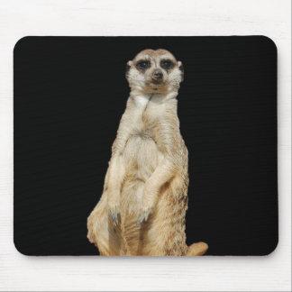 Meerkat schwarzer Hintergrund Mauspad