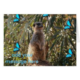 Meerkat und blaue Schmetterlinge, Karte
