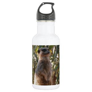 Meerkat und Schmetterlinge, Edelstahlflasche