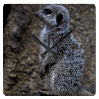 Meerkat Wanduhr