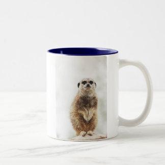 meerkat zweifarbige tasse