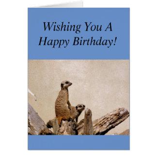 Meerkats alles- Gute zum Geburtstaggruß! Karte