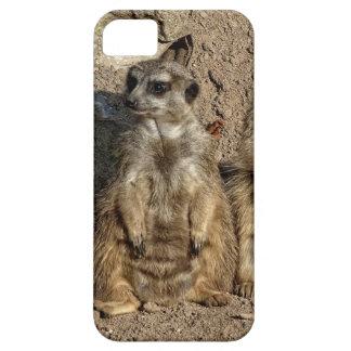 Meerkats Schutzhülle Fürs iPhone 5