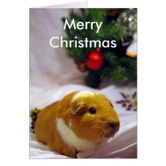 Meerschweinchen-Weihnachtskarte Karte