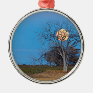 Mega- Biber-Mond Rundes Silberfarbenes Ornament