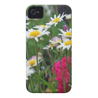 Mehrfarbige Wildblumen in einem Garten iPhone 4 Hülle