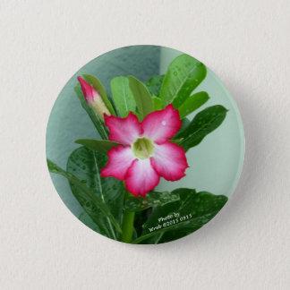 Meine Wüsten-Rose Runder Button 5,1 Cm