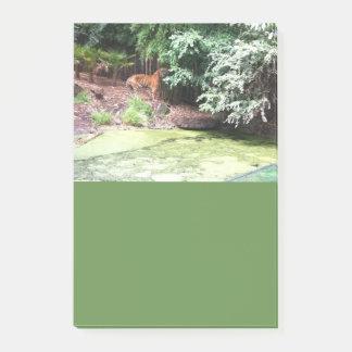 Melbourne-Zoo-Tiger-Post-Itanmerkungen Post-it Klebezettel