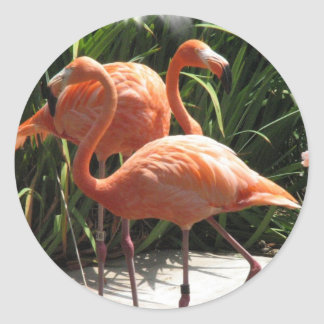 Menge der Flamingo-Aufkleber Runder Aufkleber
