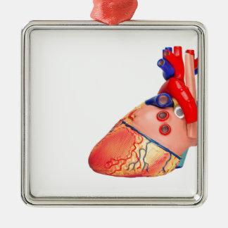 Menschliches Herzmodell auf weißem Hintergrund Silbernes Ornament
