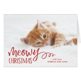 Katzen Weihnachtskarten auf Zazzle Deutschland
