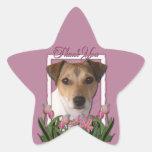 Merci - tulipes roses - Jack Russell Sticker Étoile