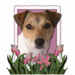 Merci - tulipes roses - Jack Russell Photo En Relief