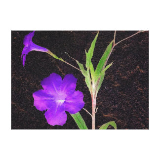 Mexikanische Petunie lila Leinwanddruck