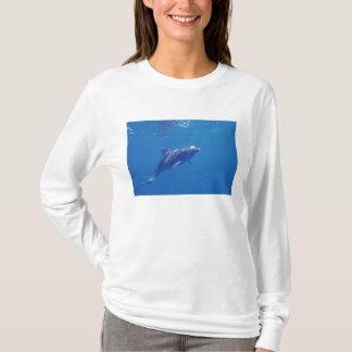 Mexiko, Cozumel. Bottlenosed Delphin T-Shirt